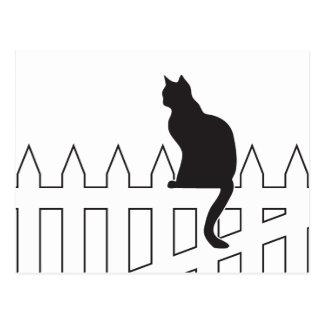 Black Cat Sitting on White Picket Fence Waiting Postcard