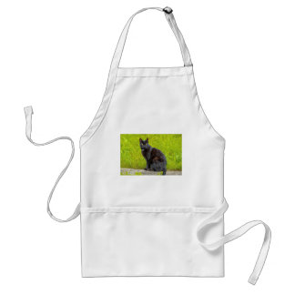 Black cat sitting outdoor adult apron