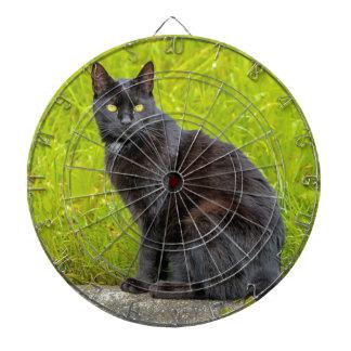 Black cat sitting outdoor dartboard with darts
