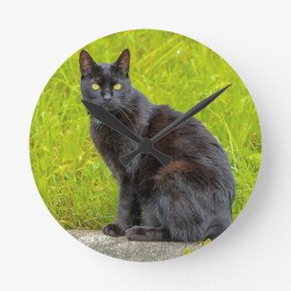 Black cat sitting outdoor round clock