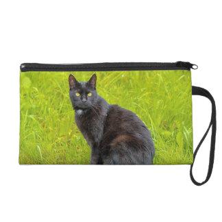 Black cat sitting outdoor wristlet purse