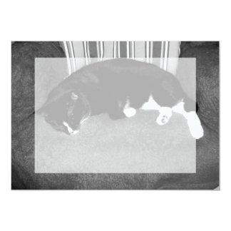 black cat sleeping on chair bw photo card