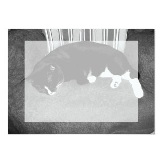black cat sleeping on chair bw photo 5x7 paper invitation card