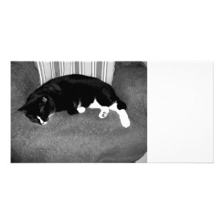 black cat sleeping on chair bw photo customized photo card
