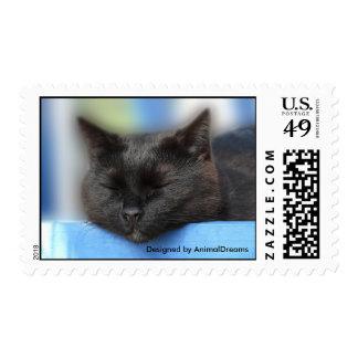Black Cat Sleeping Postage