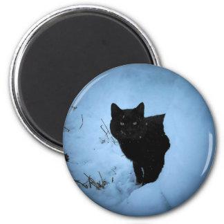 Black cat Snowy spotlight 2 Inch Round Magnet