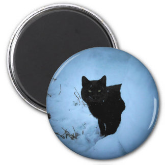 Black cat Snowy spotlight Magnet