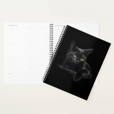 Halloween Themed Black Cat Spiral Planner