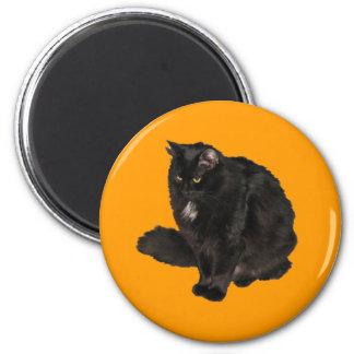 Black Cat Star Noir Magnet