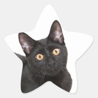 Black cat star sticker