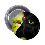 Black Cat Stare Buttons
