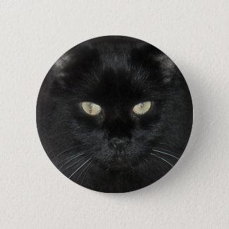 Black Cat Stare Pinback Button