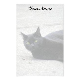 Black  Cat Stationery Paper