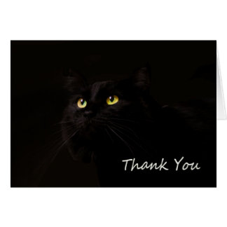 Black Cat Thank You Card by Focus for a Cause