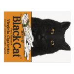 Black Cat Virginia Cigarettes Advert Postcard