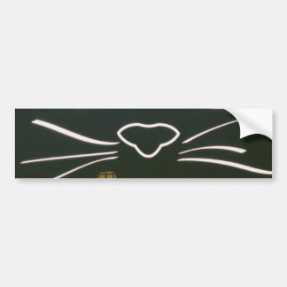 Black Cat Whiskers Bumper Sticker