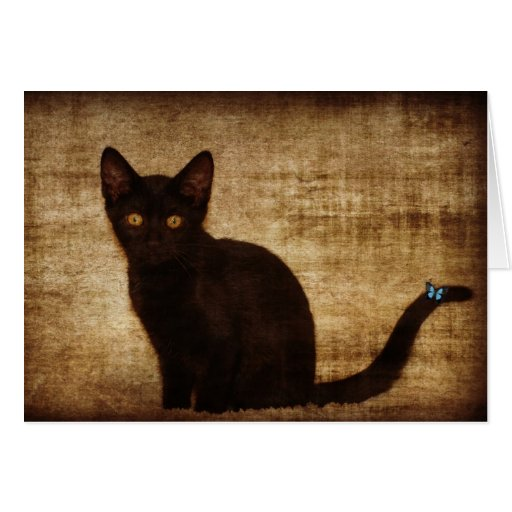 Black Cat With Butterfly Notecard