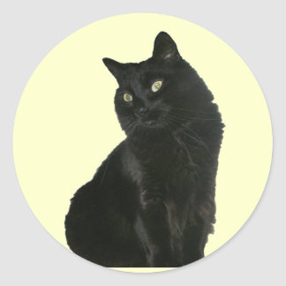 Black Cat with Golden Eyes Sticker