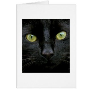 Black Cat with Green Eyes Card