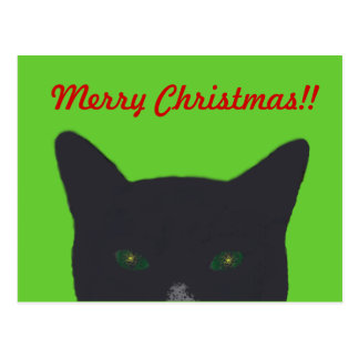 """Black cat with green, red  """"Merry Christmas"""" Postcard"""