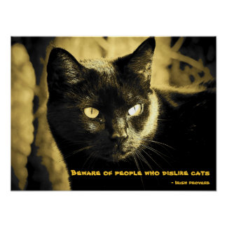 Black Cat with proverb Poster