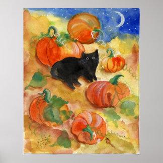 Black Cat With Pumpkins Poster