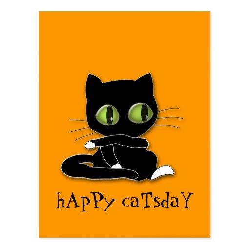 black cat with white socks postcard