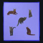 "Black Cats Bandana<br><div class=""desc"">Black cats decorates this cute blue bandana</div>"