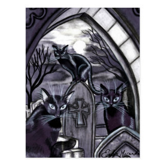 Black Cats Full Moon Graveyard Post Card