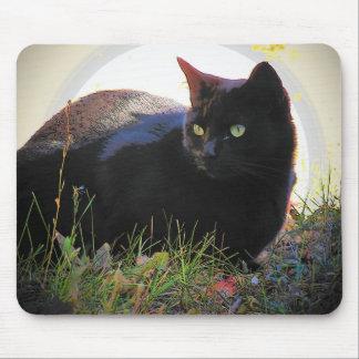 Black Cat's Glow Mouse Pad