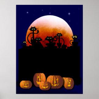 Black Cats, Moon, Pumpkins Poster