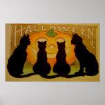 Black Cats Pumpkin Halloween Poster