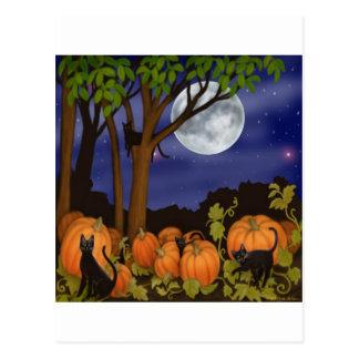 Black Cats & Pumpkins Postcard