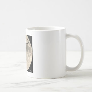Black cats rock mug