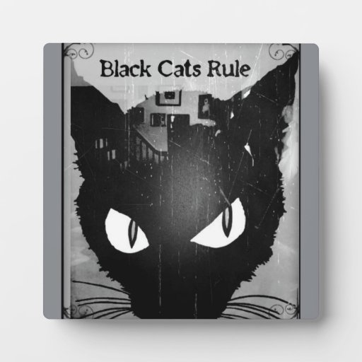 black cats rule