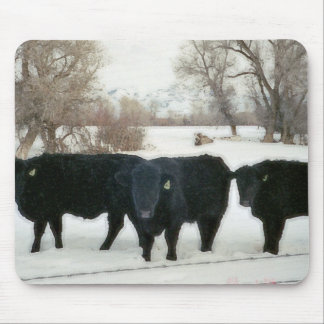 Black Cattle in Snow Mouse Pad