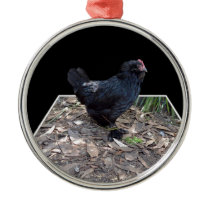 Black Chicken Pop Out,_ Metal Ornament
