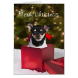 Black Chihuahua Christmas card