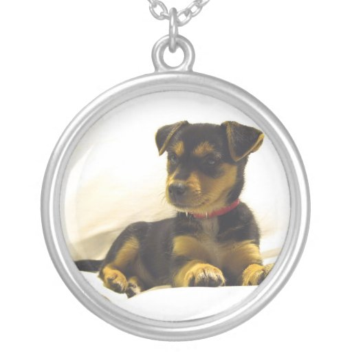 Black Chihuahua Puppy Necklace