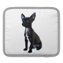 Black Chihuahua puppy Sleeve For iPads