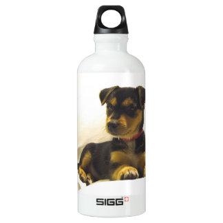 Black Chihuahua SIGG Traveler 0.6L Water Bottle