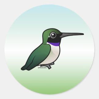 Black-chinned Hummingbird Classic Round Sticker