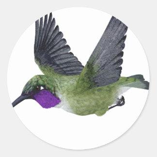 Black Chinned Hummingbird Classic Round Sticker