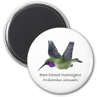 Black Chinned Hummingbird with Name 2 Inch Round Magnet