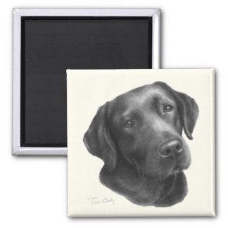 Black/Chocolate Labrador Retriever 2 Inch Square Magnet
