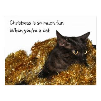 Black Christmas cat Postcard