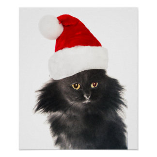 BLACK CHRISTMAS CAT WITH SANTA CLAUS HAT POSTER