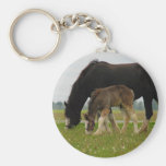 Black Clydesdale and Filly Basic Round Button Keychain