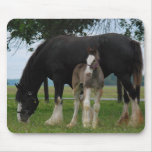 Black Clydesdale and Filly Mouse Pads