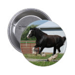Black Clydesdale Pin